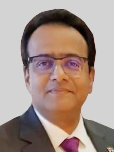 Mr. Sanjay Anand