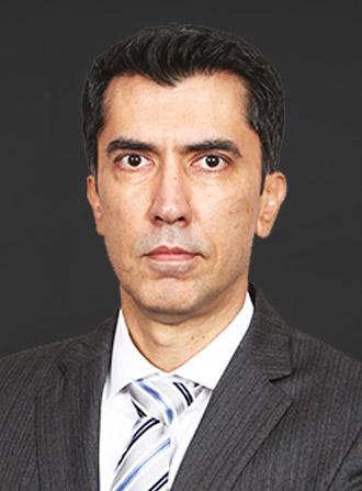Mr. Hardip Singh Wirk